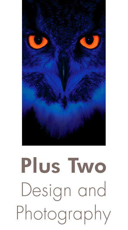 Plus Two Design